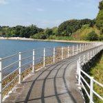 大崎半島サイクリングロード