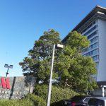 琵琶湖マリオットホテル